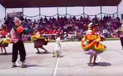 Danza Llama Chinchiy