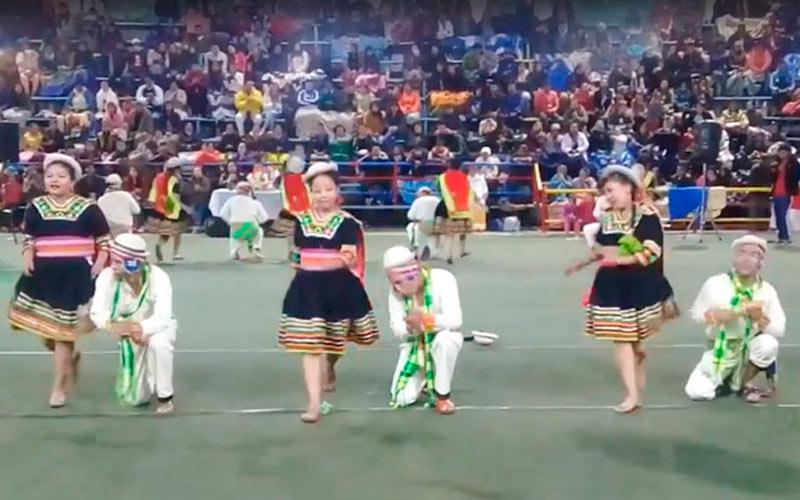 Danza Los Potolos