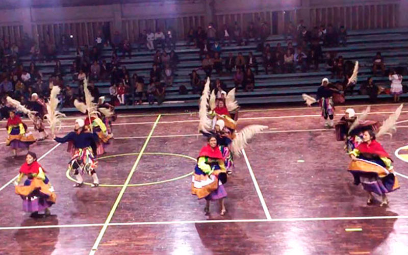 Danza Qocharunas